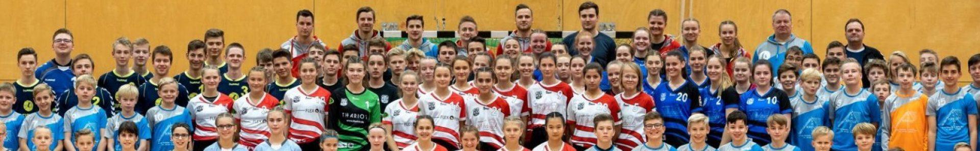 Haaner TV / HSG Adler Haan - Handball